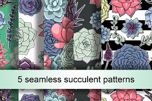 5 seamless succulent patterns