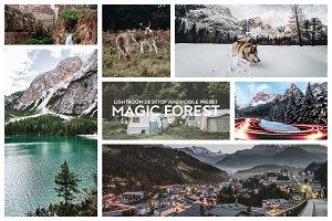 MAGIC FOREST PRESETS LIGHTROOM