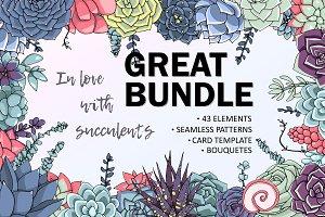 Succulent bundle!