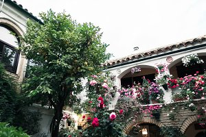 Typical andalusian courtyard in Cord