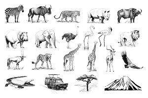 Set of many african animals and car,