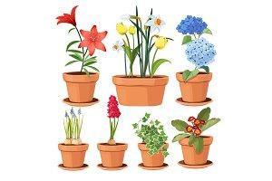 Modern flower pots. Colored