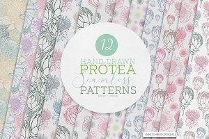 HAND DRAWN PROTEA SEAMLESS PATTERNS