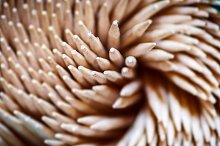 a group of wooden toothpicks  by  in Abstract