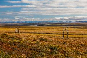 Colorful autumn tundra in Chukotka