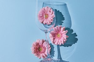 Glass of wine with pink gerberas on