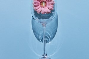 Glass of wine and pink gerbera on a