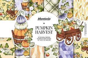 Pumpkins Digital Paper