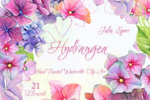 Hydrangea Flower Watercolor Clipart