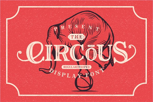 Display Fonts: 24Design Studios - The Circous