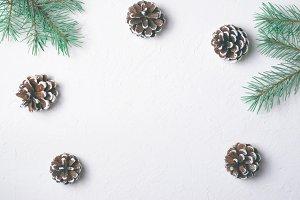 Winter Concept, Pine Cones and Brach