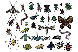 33 Hand Drawn Vector Bug Doodles