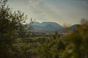 The landscape of the Colli Euganei.