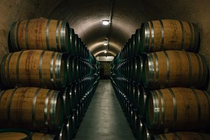 Wine barrels stacked in a cellar