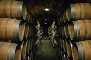 Wine wooden barrels in cellar