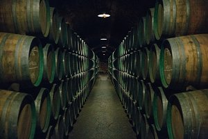 Wooden wine barrels stacked in a cel