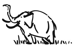 Elephant. Hand drawn illustration.