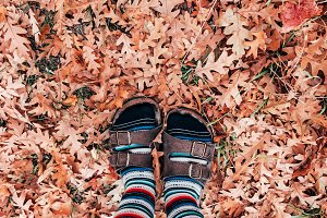 Socks and Sandals in Fall Leaves