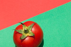 Red tomato on a red green background