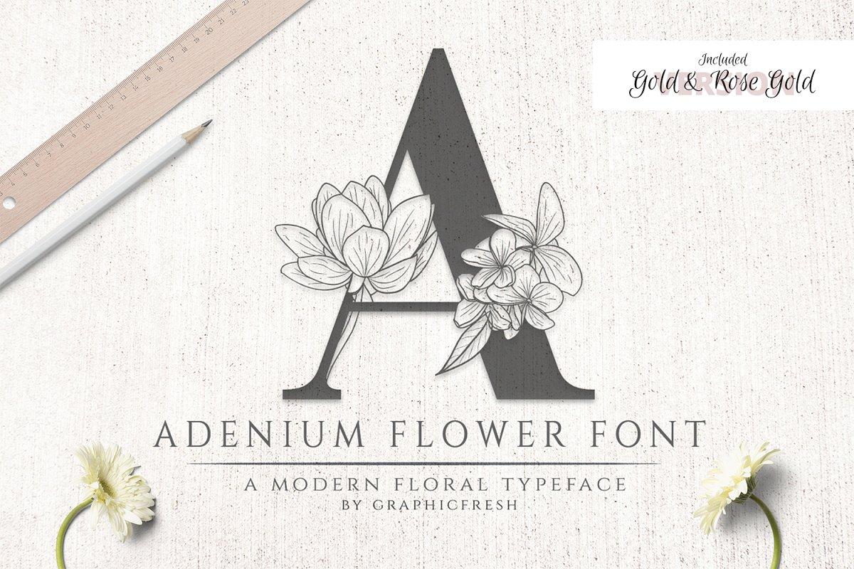 Adenium Font + Gold & Rose Gold Foil ~ Display Fonts