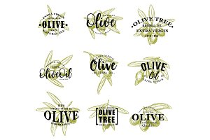 Olive oil and branches icons