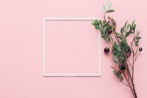flat lay with frame and branch with