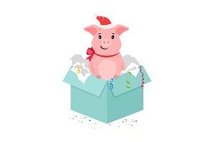 Cartoon pig in gift box