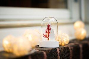 Christmas decoration on a window