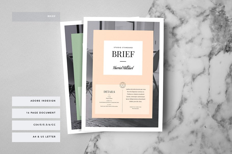 Kingsley Brief Template Brochure Templates Creative Market