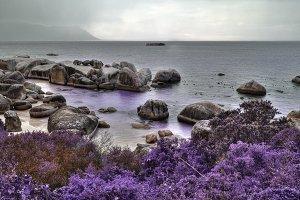 Boulders Lavender Beach