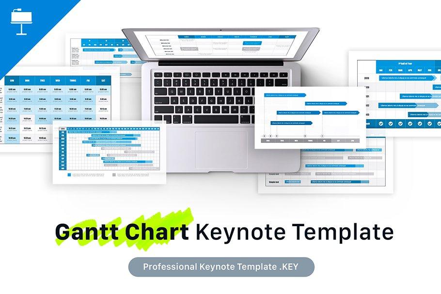 Gantt Chart Keynote Template Presentation Templates Creative Market