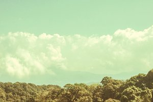 Landscape of sky tree cloud mountain
