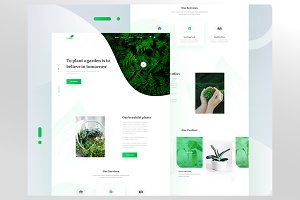 Seedling web template