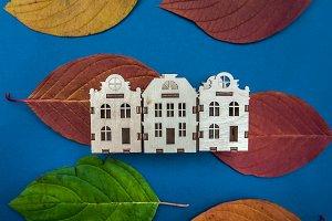 Concept of autumn  city  , colorful