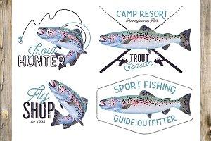 Rainbow Trout Fish Illustration.