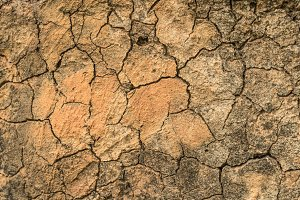 crack dry soil and rock on ground