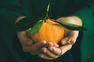 Fresh tangerine citrus fruit in