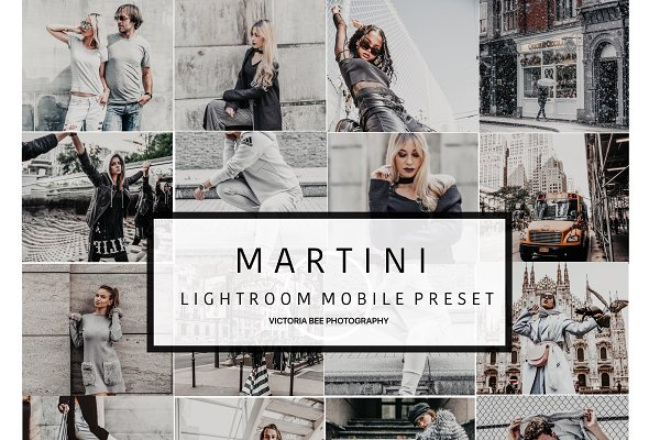 Mobile Lightroom Preset MARTINI