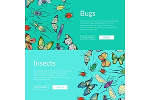 Vector hand drawn insects web banner