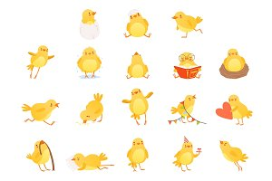 Set of funny yellow chicken in