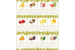 Pomelo and Kumquat Posters Vector