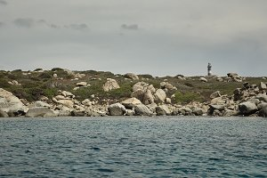The lighthouse dispersed in the natu