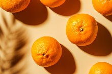Top view of tangerines and twig shad by  in Food & Drink