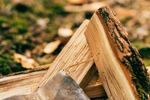 close up of pile of chopped firewood