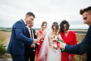 Wedding couple and braidsmaids with