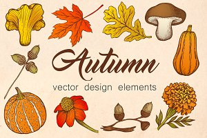 Autumn Vector Design Elements