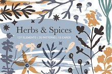 Herbs & Spices. Big graphic set.