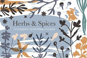 Herbs & Spices. Big graphic set