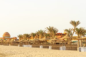 beach on the shores of the desert