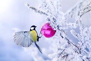 new year bird on the tree